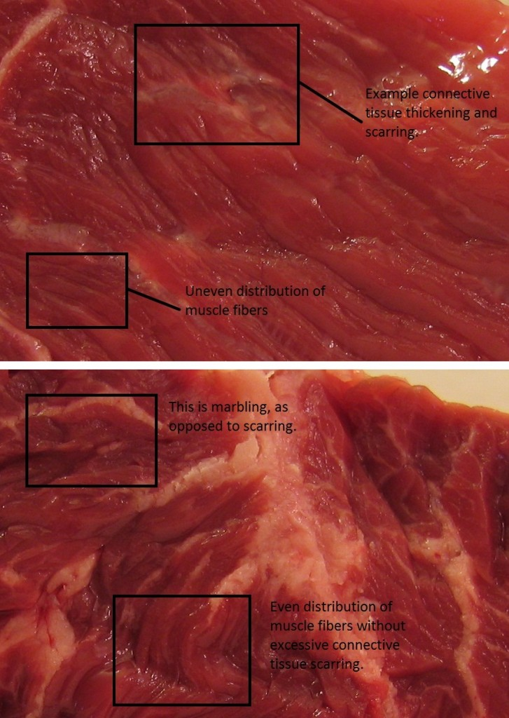 steak examples